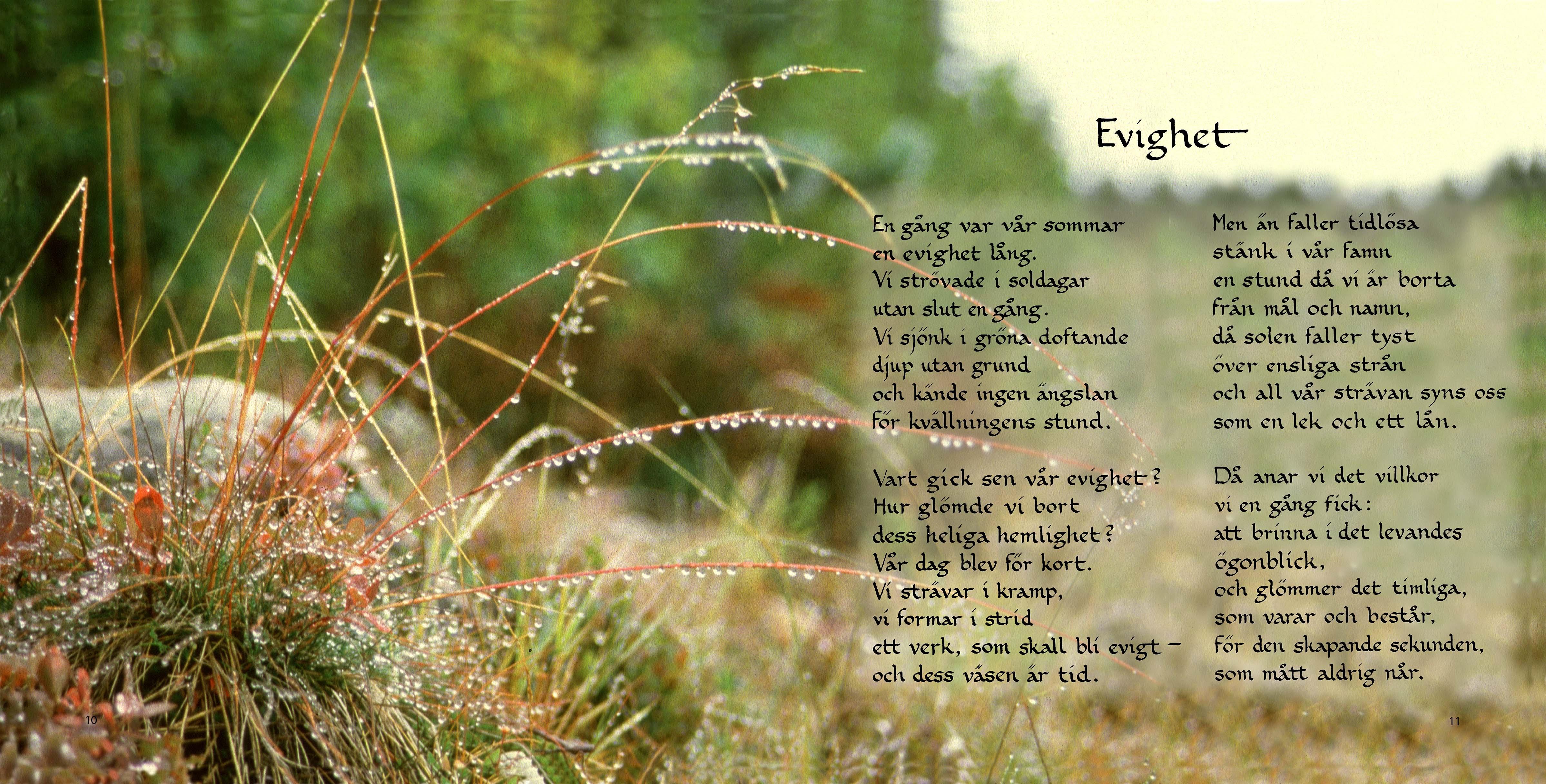 Bild från presentboken Till Dig